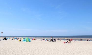 Hotels in Renesse