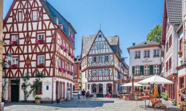 Guest Houses in Mainz