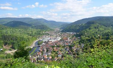 Hotels in Bad Wildbad
