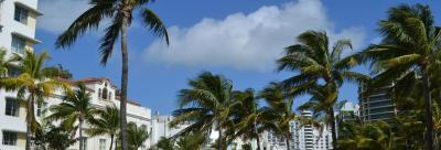 מיאמי ביץ'