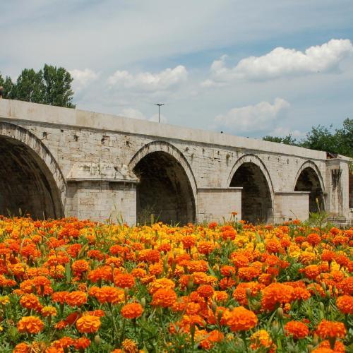 Skopje, Kuzey Makedonya