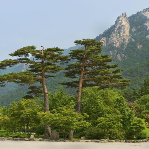 대한민국 속초