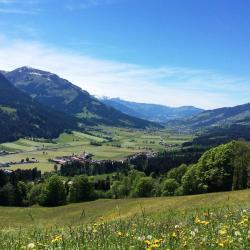 Brixen im Thale 145 hotels