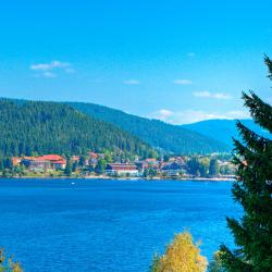 Titisee-Neustadt 90 hotels