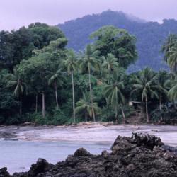 Bahía Solano 25 hotels