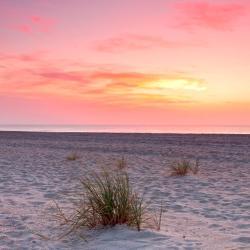 Fernandina Beach 283 hotels