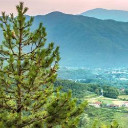 Picinisco 7 case vacanze