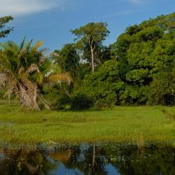 Rondonópolis 20 hotéis