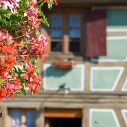 Saint-Amand-les-Eaux 20 szálloda