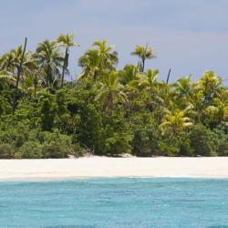 Treasure Island 1 hotel