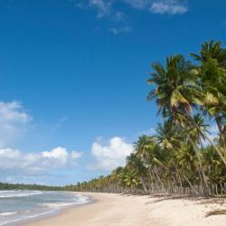 Ilha de Boipeba 126 viešbučių