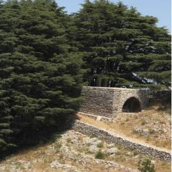 Beit Meri
