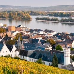 Rüdesheim am Rhein 66 hotels
