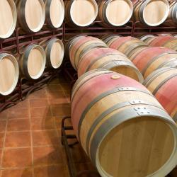 Castañares de Rioja 5 hotels