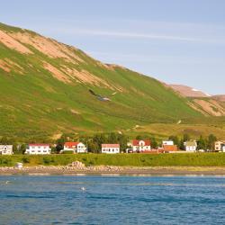 Ólafsfjörður 3 hótel