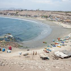 Barranca 4 pet-friendly hotels
