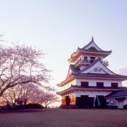 Tateyama 21 hotels
