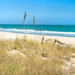 Ormond Beach 88 hotels