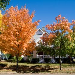 Auburn 8 hotelů