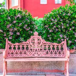 Nogales 8 hoteles