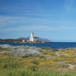 Olbia 258 self catering properties