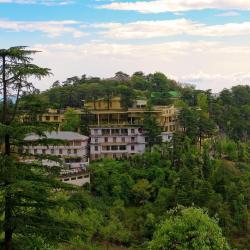 Dharamshala 309 hotels