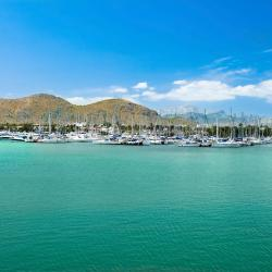 Port d'Alcudia 36 pet-friendly hotels