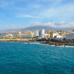 Puerto de la Cruz 362 vacation rentals
