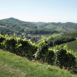Sasbachwalden 3 homestays