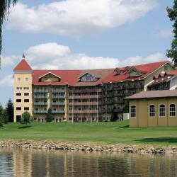 Birch Run 7 hotels