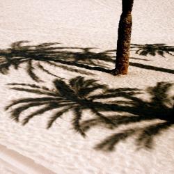 Costa del Silencio 321 hoteller