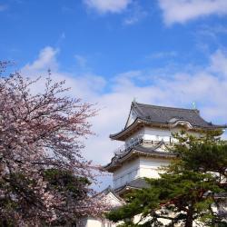 Odawara 33 hotels