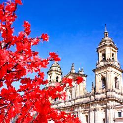 Bogotá 525 vacation rentals