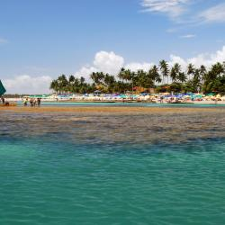 Porto De Galinhas 559 self catering properties