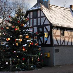 Niedernhausen 9 Hotels