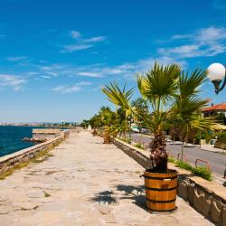 Pomorie 24 homestays