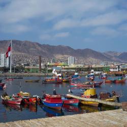Antofagasta 230 hoteles