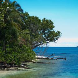 Honiara 12 hotels