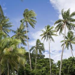 Paea 9 hôtels