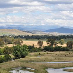 Corryong 5 hotels