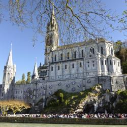Lourdes 204 hotels