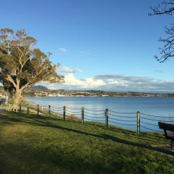 Taupo 8 homestays