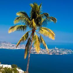Acapulco 702 hoteles