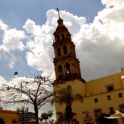 León 173 hotels