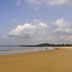 Calangute 34 self catering properties