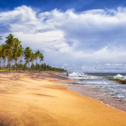 Negombo 763 hotels
