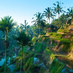 Ubud 110 hotels with a jacuzzi