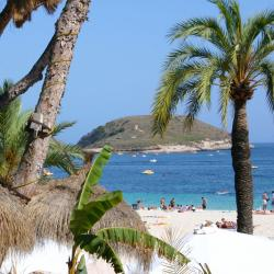 Magaluf 3 pet-friendly hotels
