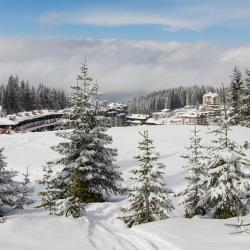 Pamporovo 195 hotels