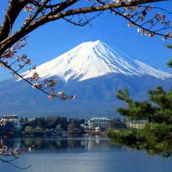 富士河口湖町 ホテル270軒